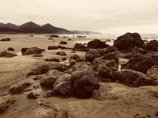 L.S. Berthelsen, Oregon coast, Cannon Beach, Marine Garden,