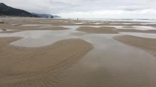 Cannon Beach, Oregon coast, Tidal flats, mediations, walk on the beach, Morning walk, L.S. Berthelsen