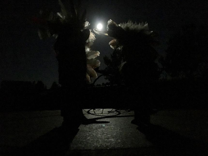 Katsina, Sedona, Full moon, moonlight